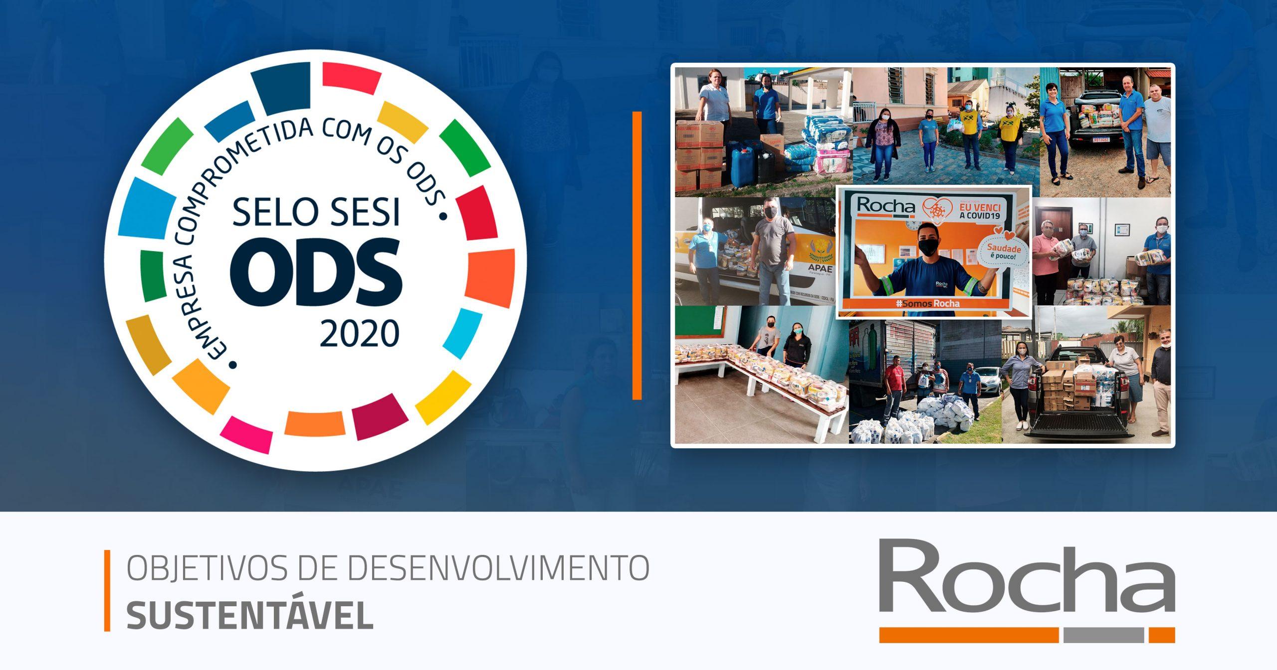 Selo ODS 2020 Rochalog